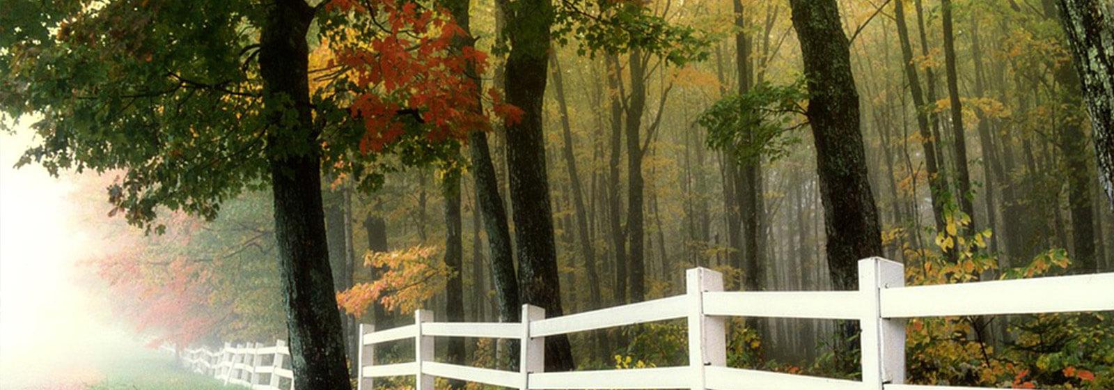 Fall image slide